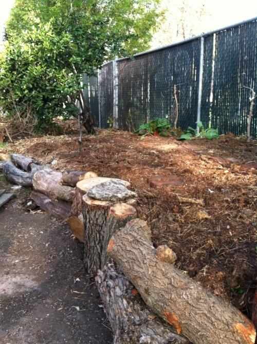 woodbed