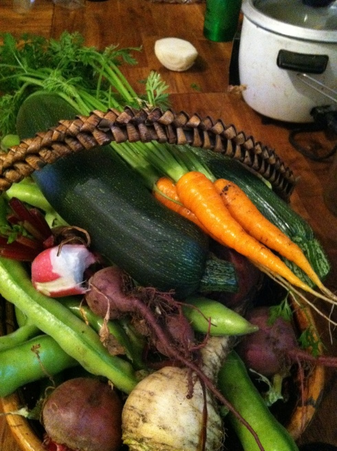 harvestbasket